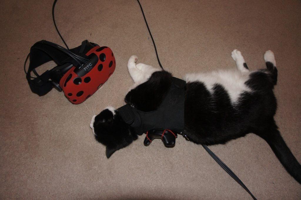 Pet in Virtual Reality